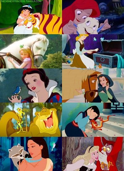 every princess has an animal sidekick