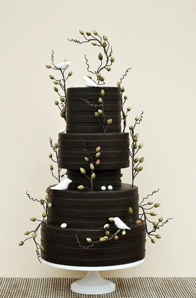 Beautiful Chocolate Brown Cake With Branches Placed All Arou