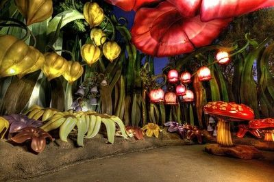 Disneyland Pixie Hollow Tinkerbell Theme Parks I Love