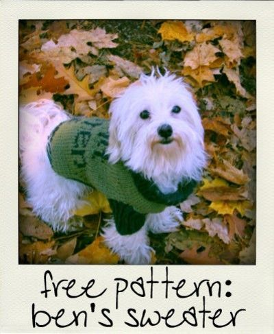 Doggie Free Pattern Sweater Free Patterns