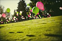 field of balloons