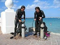 cozumel padi open water training dives, $150 including equipment at THE ROYAL RESORTS Free to see if you like it.