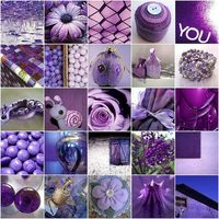 many, many shades of purple....