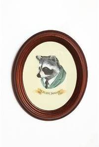 Tornadoes and Tigers: Mr.Raccoon