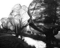 christo & jeanne claude, wrapped trees.