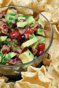 Cranberry and Avocado Salsa Beantown Baker